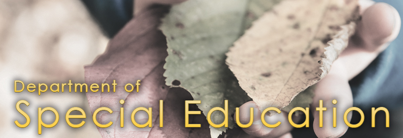 Department of Special Education Logo